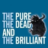 EDINBURGH 2014 - BWW Reviews: THE PURE, THE DEAD AND THE BRILLIANT, Assembly Rooms, August 4 2014
