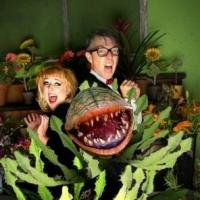 BWW Reviews: LITTLE SHOP OF HORRORS is a Great Big Hit!