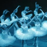 Moscow Festival Ballet to Bring SWAN LAKE to Harris Center, 2/4-6