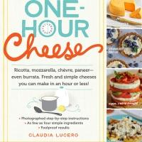 BWW REVIEWS: ONE HOUR CHEESE by Claudia Lucero