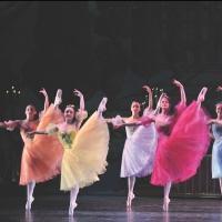 NJ Ballet's NUTCRACKER Brings Holiday Magic to Morristown, Now thru 12/24