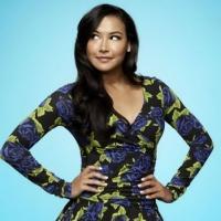Demi Lovato to Play Santana's Love Interest on GLEE