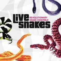 Accurate Records Releases Ken Field's 'Live Snakes' Today