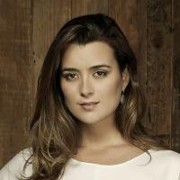 Cote de Pablo to Star in CBS's Upcoming Miniseries THE DOVEKEEPERS