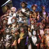 STAGE TUBE: Sneak Peek - Andrew Lloyd Webber's CATS, Coming to PBS This Friday