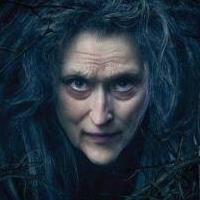 INTO THE WOODS, BIRDMAN & More Nominated for Artios Awards; Rob Marshall to be Honored at Ceremony