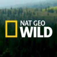 Nat Geo WILD's CESAR 911 Returns 2/27