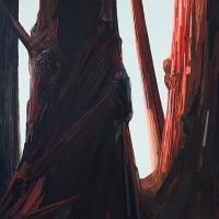 Claire Sherman's SEMPERVIRENS Opens Today at DC Moore Gallery