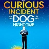 THE CURIOUS INCIDENT OF THE DOG IN THE NIGHT-TIME Begins Performances on Broadway Tonight