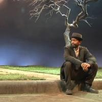 BWW TV: First Look at Highlights of Court Theatre's WAITING FOR GODOT
