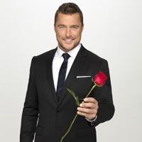 ABC's THE BACHELOR Towers Over 'Celebrity Apprentice'
