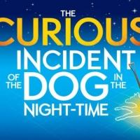 Oliviers Reaction: National Theatre 'Proud' Of CURIOUS INCIDENT Nominations!