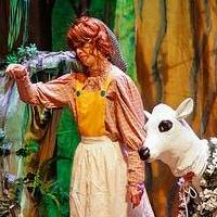 BWW Reviews: Stephen Sondheim's INTO THE WOODS at the Center for the Arts at River Ridge