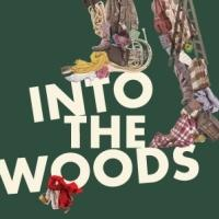 Save $20 on the 'Truly Enchanting' INTO THE WOODS!
