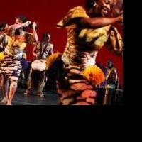 BWW Reviews: Brooklyn Academy of Music's 36th Season of DanceAfrica - Embodies Intricate Paths of Tradition and Change