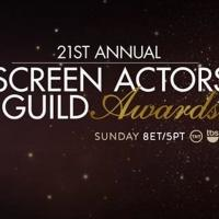 Photo Coverage: SAG Awards Red Carpet