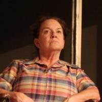 BWW Reviews: Theatre West Brings Back a Resounding VERDIGRIS