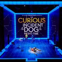 AmEx Presale to Begin Tomorrow For National Theatre's THE CURIOUS INCIDENT OF THE DOG IN THE NIGHT-TIME on Broadway