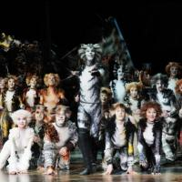 Andrew Lloyd Webber Wants CATS to Return to the Palladium Next Christmas
