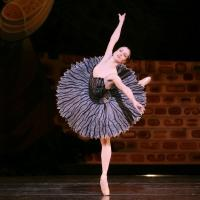 BWW Interviews: Sara Webb Talks Houston Ballet's SWAN LAKE