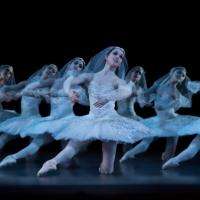 GISELLE and LA BAYADERE Set for Houston Ballet's 2014-15 Tour, Kicking Off This Weekend