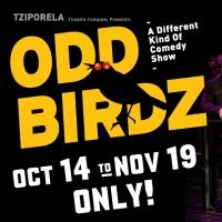 Tziporela's ODD BIRDZ Begins Tonight at The Players Theatre