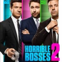 Photo Flash: New Poster for HORRIBLE BOSSES 2