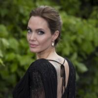 Angelina Jolie to Helm Richard Leakey Biopic AFRICA