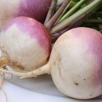 Fitness Tip of the Day: Try Turnips