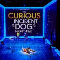 Performances Cancelled Through January 11 for THE CURIOUS INCIDENT OF THE DOG IN THE NIGHT TIME Due to Apollo Theatre Collapse