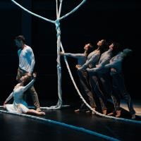 BWW Reviews: Wandering with Jessica Lang Dance