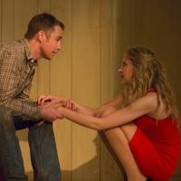 Nina Arianda and Sam Rockwell Will Star in FOOL FOR LOVE on Broadway Next Fall; David Hyde Pierce Set to Direct RIPCORD!