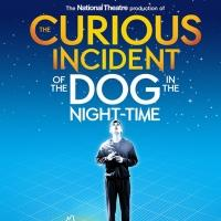 'CURIOUS INCIDENT' Tops Time's Best Plays and Musicals of 2014