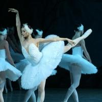 SWAN LAKE Adds at St. Petersburg Ballet Adds Two Performances, 8/19