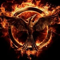 Lionsgate to Release THE HUNGER GAMES - MOCKINGJAY - PART 1 in China 2/8