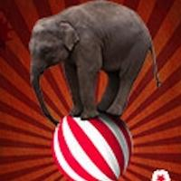 Totem Pole Playhouse Presents BARNUM, Now thru 8/18