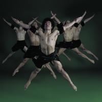 BWW Reviews: FALL FOR DANCE 2014 - Program One