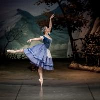 BWW Reviews: The Mikhailovsky Ballet's GISELLE