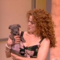 VIDEO: Bernadette Peters Promotes 'Broadway Barks' on THE VIEW