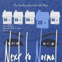 BWW Reviews: Insanity or Genius? Shots In the Dark Presents NEXT TO NORMAL