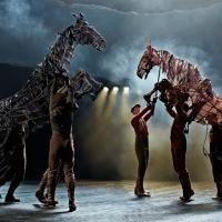 BWW Reviews: WAR HORSE Mesmerizes Cincinnati