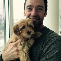 PHOTO: Santa Brings Hugh Jackman New Family Pooch for Christmas!