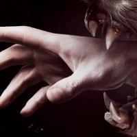 Netflix Orders Second Season of Gothic Thriller HEMLOCK GROVE