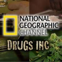 National Geographic Channel's DRUG,INC. Teams With Drugfree.org