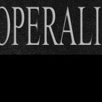 Judges and Contestants Announced for Plácido Domingo's OPERALIA This Summer