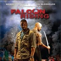 Michael Jai White Action Thriller FALCON RISING Coming to Netflix 1/4