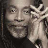 SummerStage Presents BOBBY MCFERRIN in Central Park, 8/20