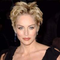 Emmy & Golden Globe Winner Sharon Stone to Star in New TNT Action-Drama Pilot AGENT X