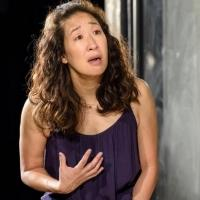 Photo Flash: First Look at Sandra Oh and More in DEATH AND THE MAIDEN at Chicago's Victory Gardens Theater