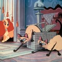 El Capitan Theatre to Screen Disney's LADY AND THE TRAMP, 2/13-19